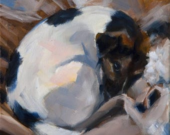 STUDIO SALE Sleeping White and Black, Brown, Jack Russell Terrier, Beige and White, Dog Sleeping, Original Painting by Clair Hartmann