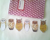 Owl Stickers, 6 owl stickers, No. American Owl Set