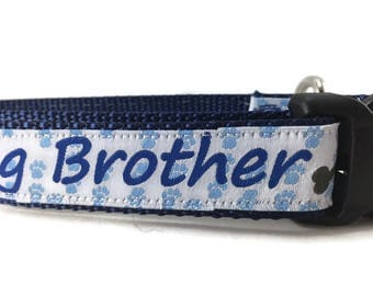 Dog Collar, Big Brother, 1 inch wide, adjustable, quick release, metal buckle, chain, martingale, hybrid, nylon
