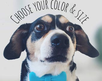 Ecoplastic Bow Tie Collar Clip-You Choose Color and Size