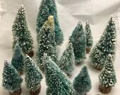 15 Vintage Bottle Brush Trees,  Frosted Mini Xmas Trees, Christmas Holiday Decorating