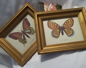 MINT Gorgeous Pair of Golden Framed Butterfly Prints  - Collectible - Art  - Wall Home Decor - Vintage