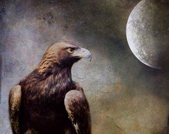 hawk full moon photograph, spirit animal bird raptor eagle photo, spiritual art, home decor nature dark photography print intuitive healing