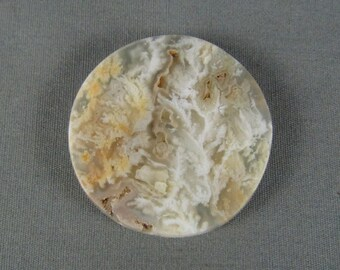Stinking Water Plume Agate Cabochon