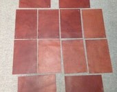 20BC.  Rust Colored Package of 12 Leather Cowhide Swatches