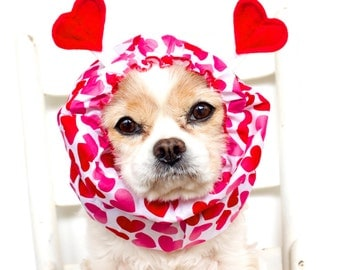 Love Bug Dog Snood / Specialty Dog snood / Cavalier or Cocker long ear covering / Valentine's Day