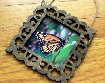 Tiny Framed Print - Viceroy Butterfly photo with wooden frame and bronze accents