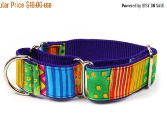 """ON SALE Whippet Dog Collar - Happy Go Lucky Stripe - 1.5"""" Martingale Dog Collar"""