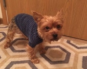 Peppers favorite for winter doggie sweater