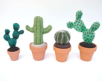 DIY Cactus Course Companion Kit - Needle Felted Cactus Kit - Free U.S. Shipping