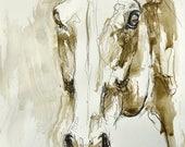 Expressive Horse Head, An...