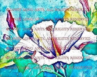 DIGITAL DOWNLOAD Flower Watercolor Print 'Hibiscus' blue pink green yellow purple lavender scarlet lake red mauve