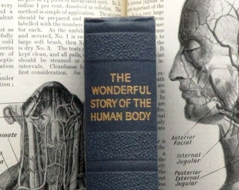 Wonderful Human Body  1930s book