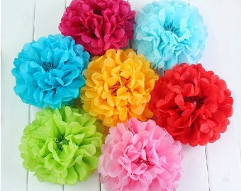 Tissue Paper Pom Pom Tissue Balls Rainbow Party Decoration Birthday Party Decorations Baby Shower Favors Hanging Tissue Pom Poms Hanging Pom
