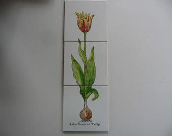 Tulip Ceramic Tile Mural - handpainted tiles