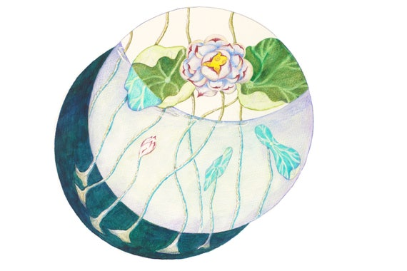 Feng Shui Water Element, Water pond with Lotus, Water Fengshui Symbol, Water Art, Lotus Lily Pond, Feng Shui Art, Feng Shui Home Decor