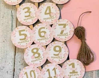 SHABBY CHIC ROSE Vintage Flower 1st Birthday Photo Clips Banner Newborn - 12 months - Party Packs Available
