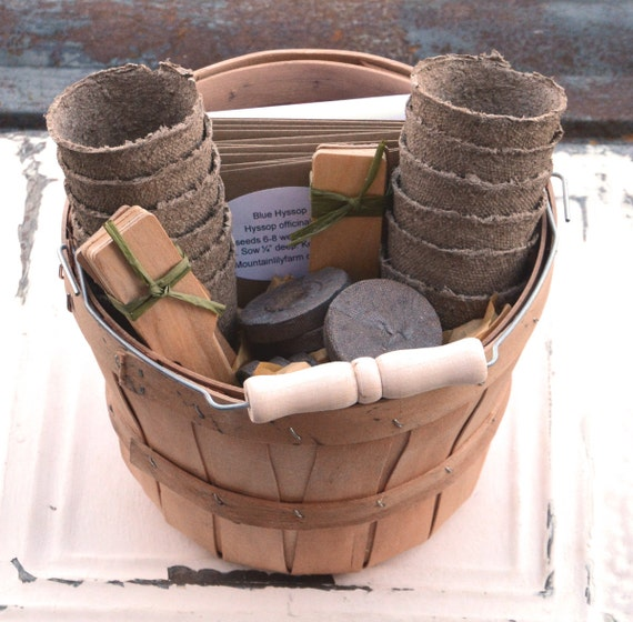 Herb Seed Kit Gardening Basket