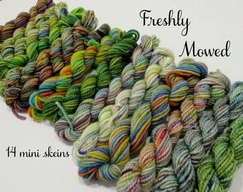 Freshly Mowed - 14 Sock Yarn Miniskeins, 12 yds each, 168 yds total