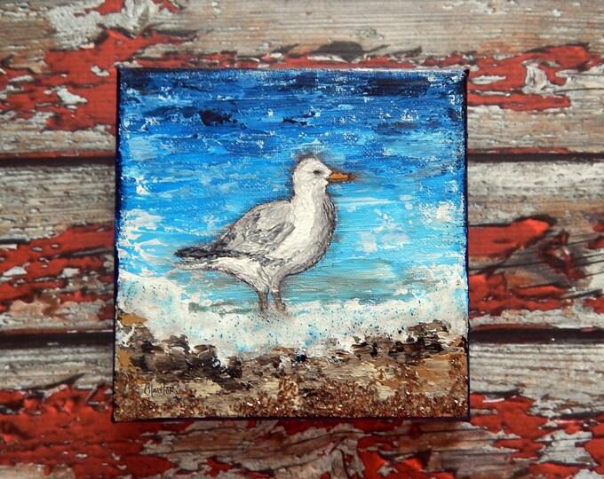 "Seagull Canvas Art | Shorebird Painting | Ocean Art | Beach Decor | 6x6 | ""Shorebirds"" Series No.1 | Saltons Cove Studio"
