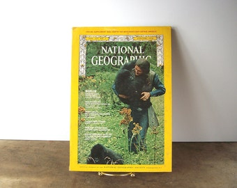 Vintage National Geographic 1970 Issue Dian Fossey Authored Article, Gorilla Photographs