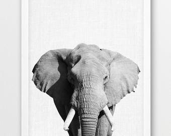 Elephant Print, Africa Safari Animals Photo, Elephant photo, Black White Nursery Animals Photo Wall Art, Kids Room Wall Home Printable Decor
