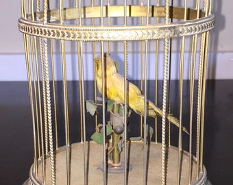 Singing Bird Box Antique French Bontems in Ornate Brass Birdcage Made in France 5318921