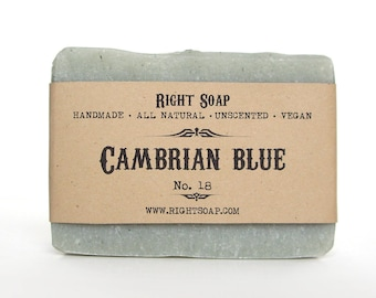 Cambrian Blue Clay Soap - Detox soap, Unscented Soap, Artisan Soap, Men Soap, Handcrafted Soap, Homemade Soap, All Natural Soap, Vegan Soap