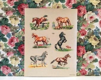 Vintage Kitsch Horse Decals Water Slide Transfers