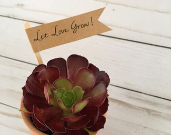 Let Love Grow Flag, Personalized Name Date Plant Flags, Wedding, Succulent Plant Tags, Baby Shower Favors, Thank you Tag, set 20