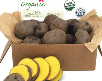 Midnight Moon Seed Potato 2 Lbs. Certified Organic Purple and Yellow Seed Potatoes- Spring Shipping Non-GMO