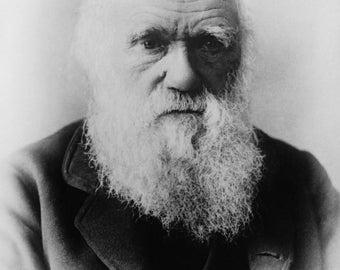 Charles Darwin, Photograph