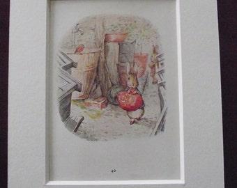 Original 1940's edition of Beatrix Potter's  'The Tale of Benjamin Bunny'.