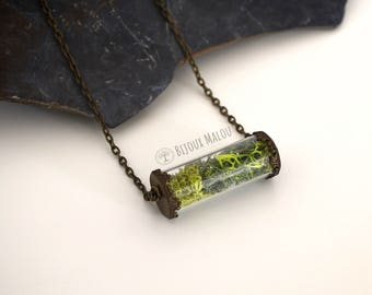 Real Moss Specimen Tube Necklace Glass Terrarium Necklace Eco Jewellery Gift Nature Woodland Spring Jewellery Test Tube Necklace