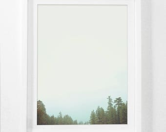 Forest Art, Forest Photography, Forest Prints, Forest Wall Art, Landscape Photography, Tree Art, Trees, Download Print, Forest Wall Artwork
