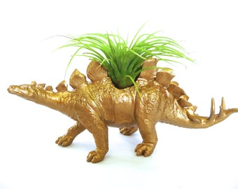 Gold Stegosaurus Dinosaur Planter with Air Plant