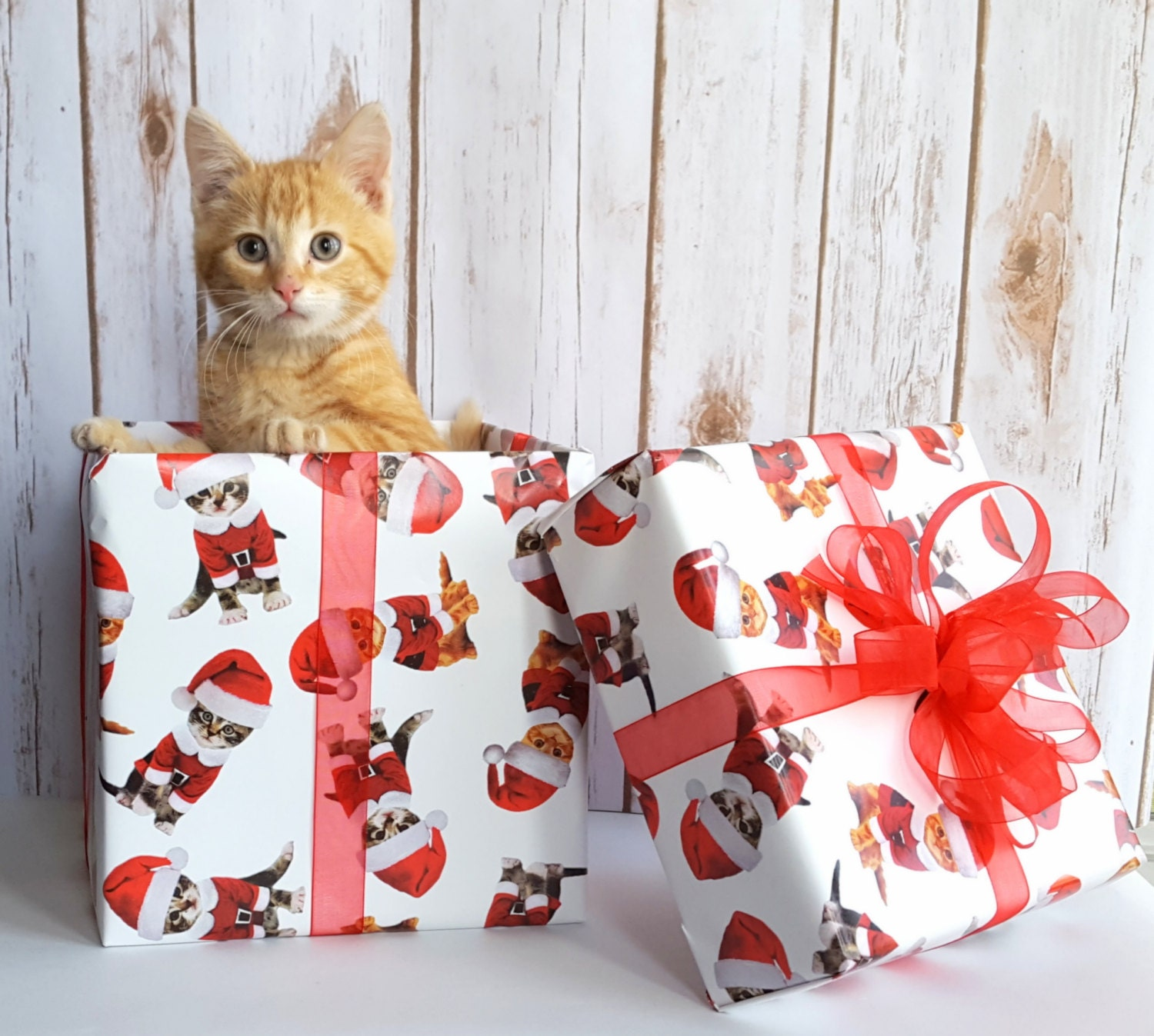 Kittens in Santa Suits Christmas Wrapping Paper