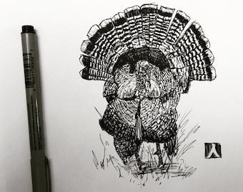 Original Drawing Of Male Wild Turkey