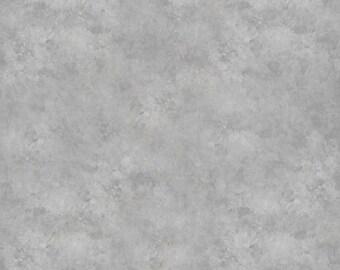 Light Grey Classic Photography Vinyl Backdrop (V8027)