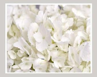 Hydrangea Wall Art white hydrangea art | etsy