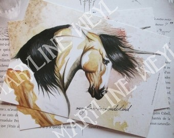 card mailing Unicorn of the sands