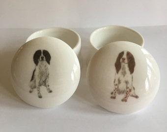 Small Springer Spaniel Trinket Box