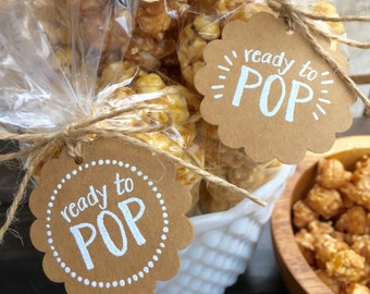 Favor Tags + Bags-Set of 20 Baby Shower Favor Popcorn Bag and Tag Kit-Ready to Pop Favor Kit-Ready to Pop Baby Shower-Handmade Favor Tags