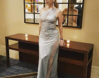 Cinderella silver glitter sheer illusion prom gown formal dress