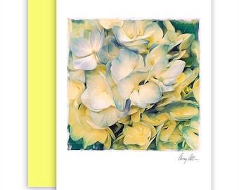 Hi-drengias  Note cards beautiful Artwork hydrengeas