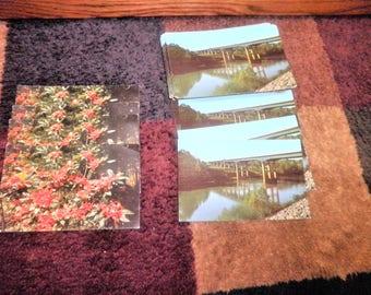 65 Vintage postcards 4 Callaway Gardens and 61 Chattahooche River bridge