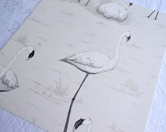 Wallpaper - Cole and Son  Sample Sheet  - 19 x 17  Ivory Flamingo