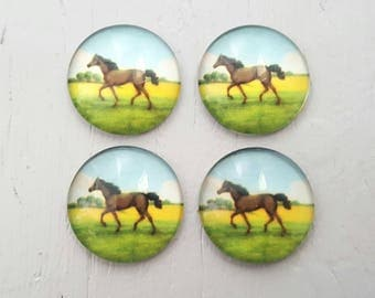 4 Horse Glass Cabochons 20x20mm Round