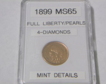 MS 1899 Indian Head Penny