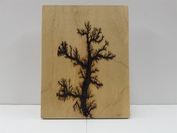 how to make lichtenberg figures in wood